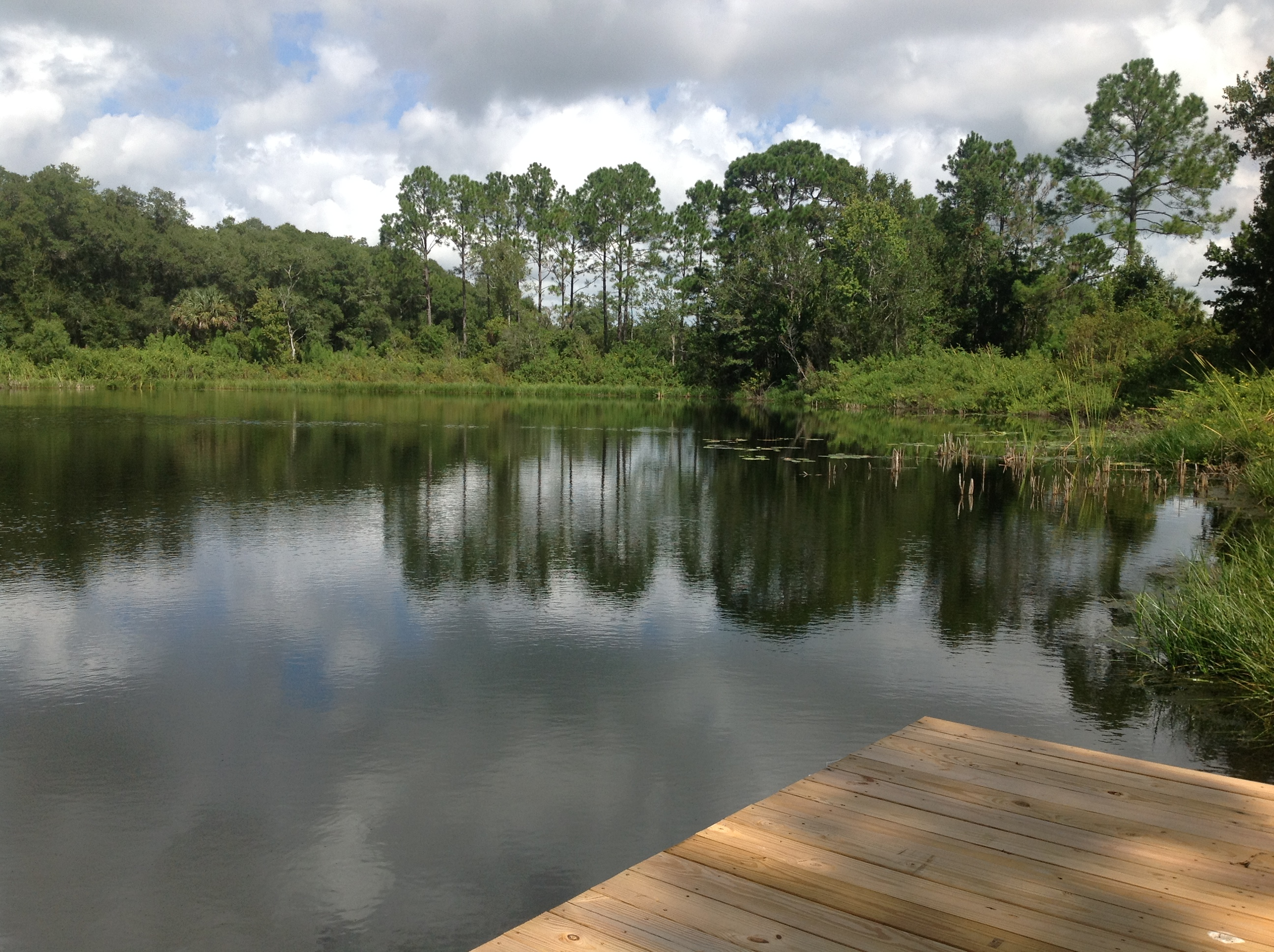Shalom Healing Home Dock View